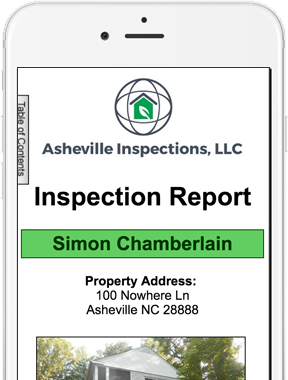 digital inspection report